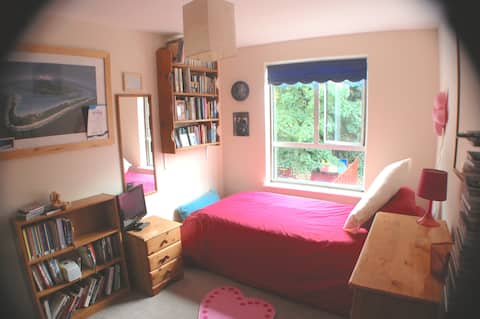 Homely room in leafy Ealing.