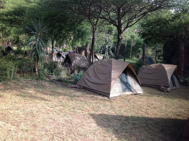 Backpackers / Campers Haven!