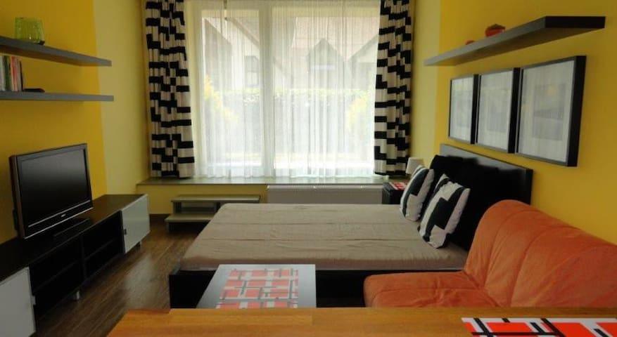 Apartmán/studio Čertovka, Harrachov