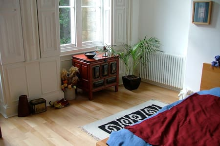 Room in a fantastic Period Aprtment - Birkenhead