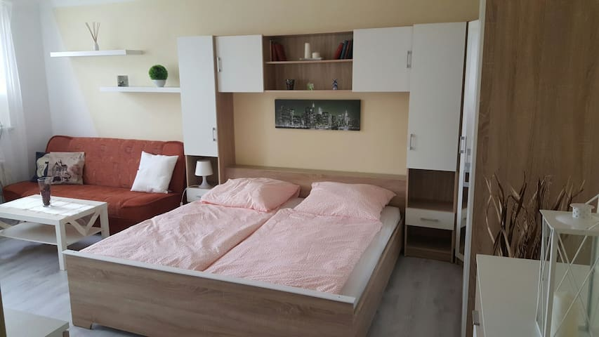 Byt v centru Karlových Varů - Karlovy Vary - Apartment