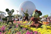 Epcot Center. Disney World.