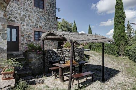 La Massa, Coccinella N°6 - Gaiole In Chianti