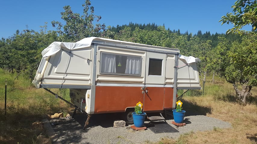 The Pear Farm Vintage Apache Camper