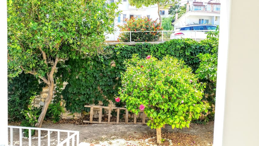 Lovely garden flat with Seaview