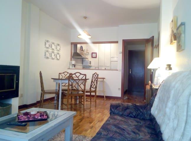 Cálido y céntrico apartamento de montaña - Ezcaray - Lejlighed