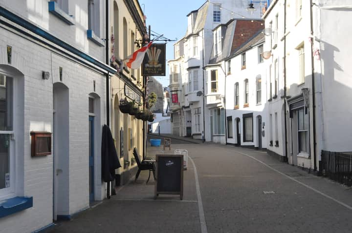 The Salt House, Fore Street Ilfracombe