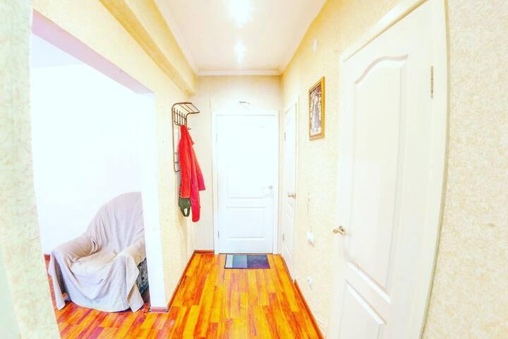 Квартира в центре на Смолина 81