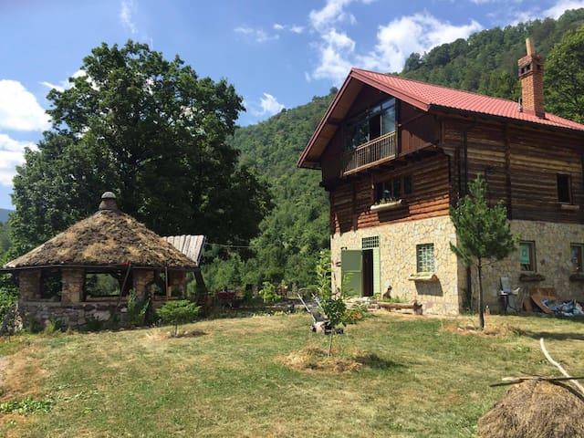 7 Krojet e Rugovës - Drelë - Flat