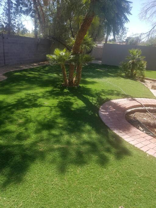 artifical turf back yard
