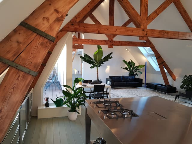 Loft >200m2 with terrace in former school