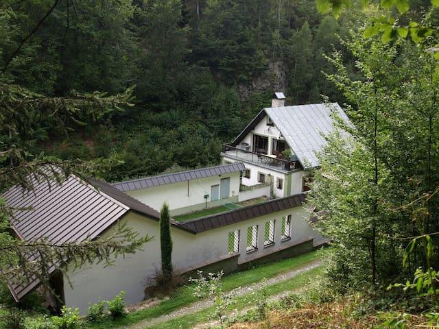 Ubytování na samotě u lesa,  v Orlických horách
