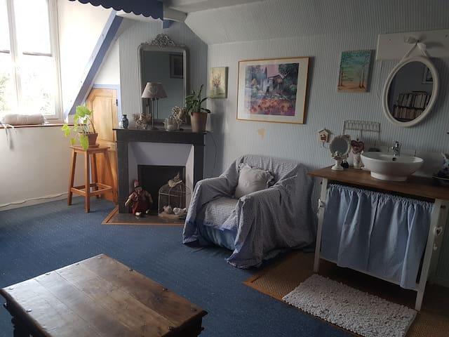 Belle chambre spacieuse avec salle de bains privée