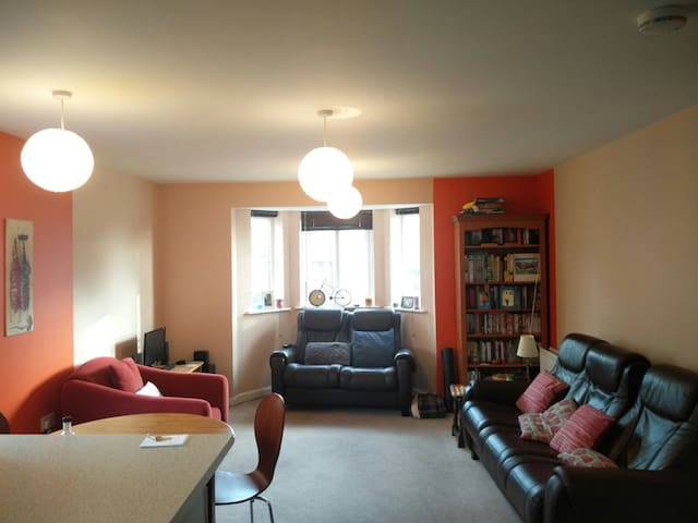 Fantastic spacious Bristol flat - Bristol - Apartment