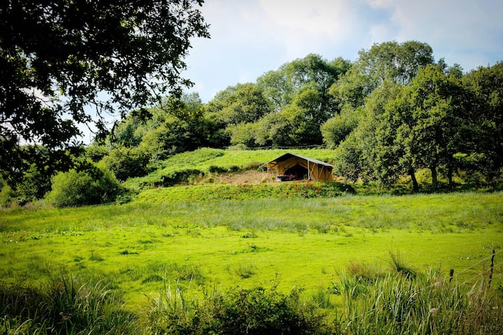 Oak Apple Lodge, Tranquil Luxury in Dorset