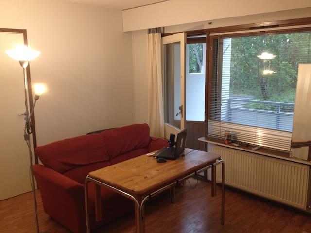 comfy apartment - Kotka - Pis