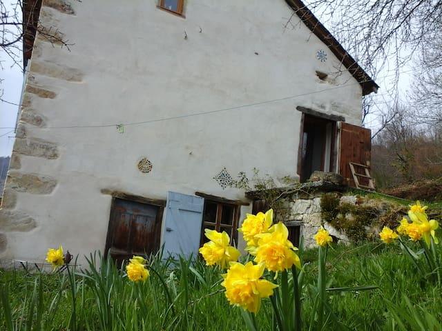 ma maison de vacance dans les Pyrénées Ariègeoises - Massat - House