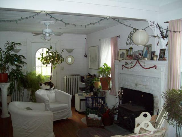 West Point/Highland Falls  cottage - Highland Falls
