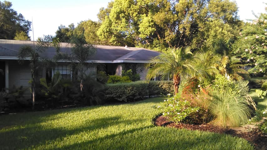 Cozy 3 BDRM pool home in Mount Dora - Mount Dora - Ev