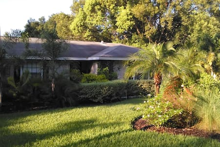 Cozy 3 BDRM pool home in Mount Dora - Mount Dora