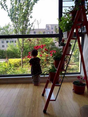 站在客厅的落地窗前,玫瑰、绣球、海棠等绿植让人心情舒畅。清晨常有喜鹊落在枝头。