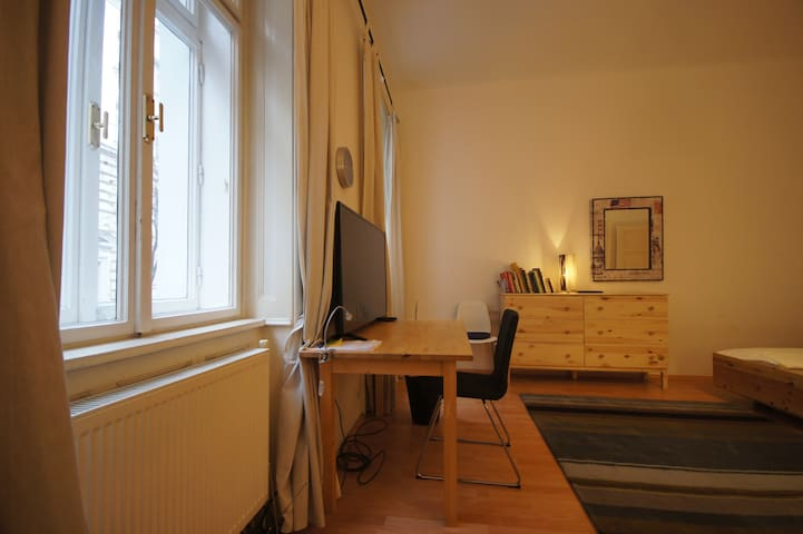 Large room on walking distance to old city - Vienna - Lejlighed