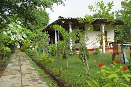 Village Garden Inn - Anuradhapura - อพาร์ทเมนท์