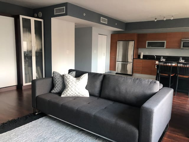 Downtown luxury high rise condo with bay view