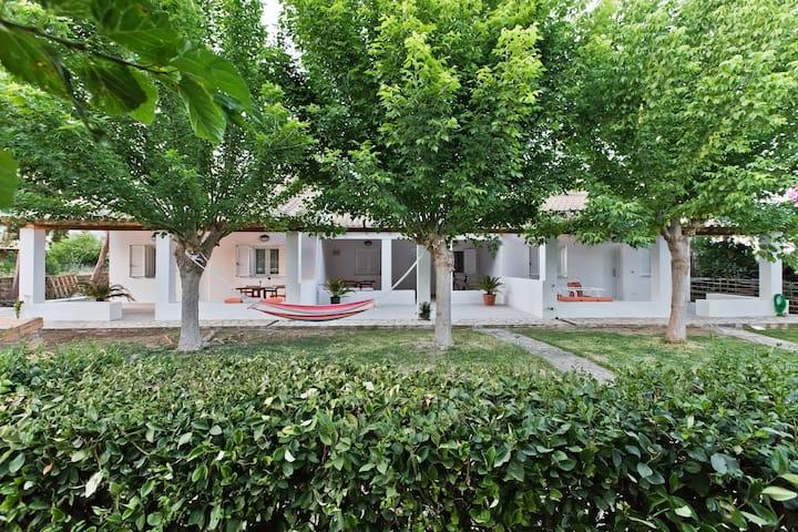 Summer retreat in olive trees estate 300m -> beach