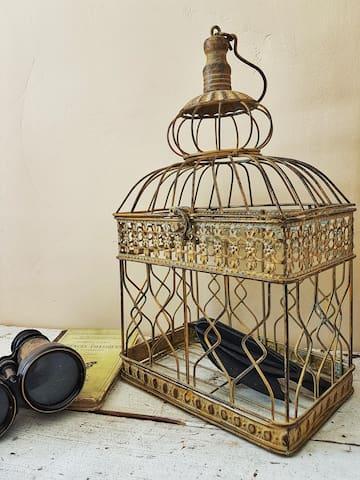 La dolce vita - Room Darwin