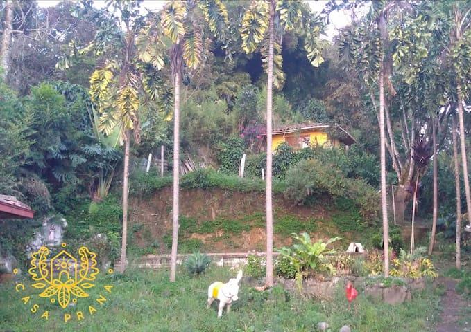 Casa Prana - Vida y Naturaleza