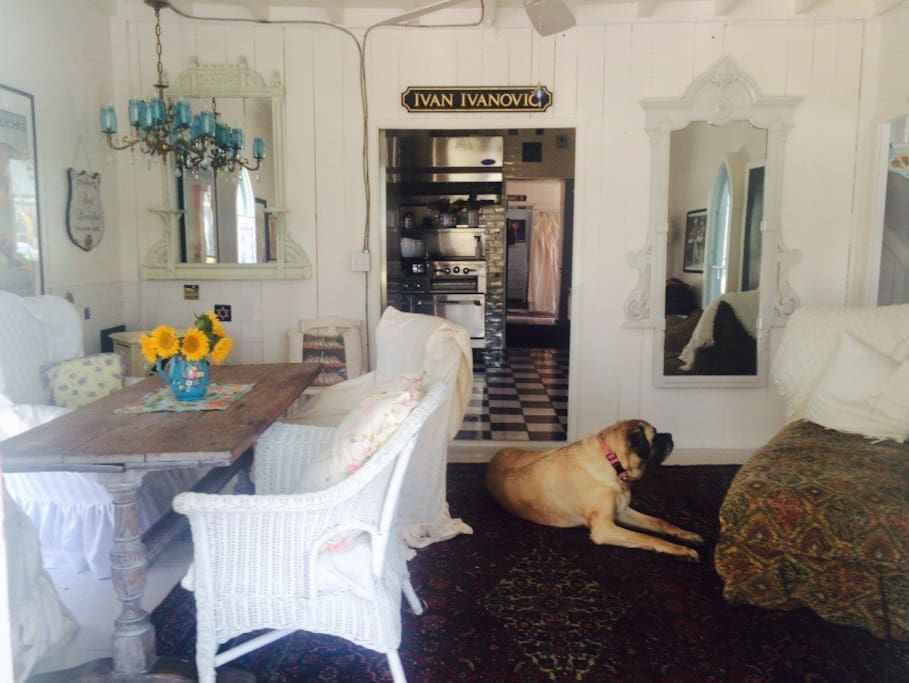 Front room with Ruby, the English Mastiff.