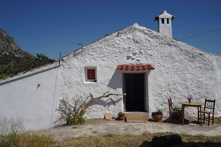 Casa Utopia I
