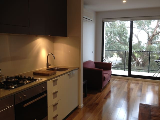 Modern City fringe living with park view. - Kensington - Apartment