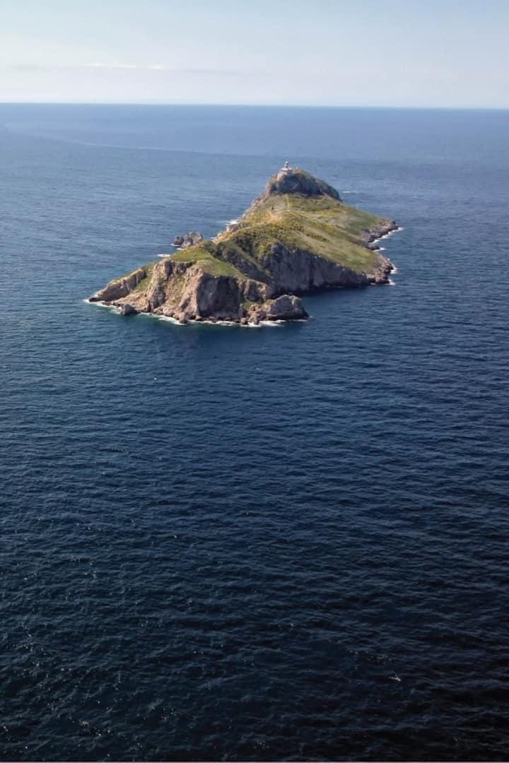 island Palagruža