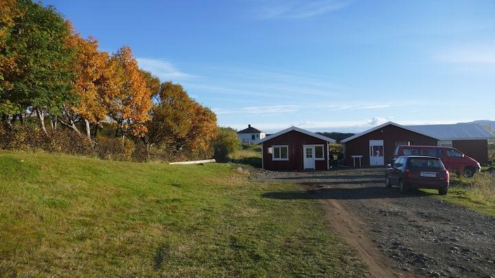 Icelandhoursetours - Helluland