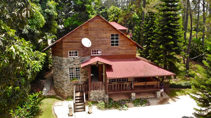Pine Forest Cabin with Jacuzzi, PingPong & BBQ