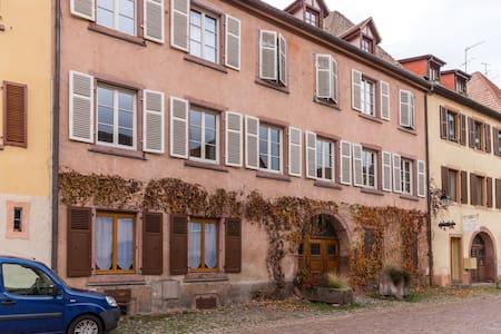 Appartement Albatros - Kaysersberg - Διαμέρισμα