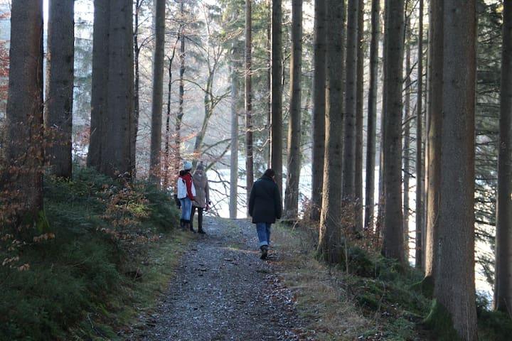 Mitten im Grünen mit Blick auf See und Berge - Immenstadt im Allgäu - Huis