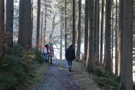 Mitten im Grünen mit Blick auf See und Berge - Immenstadt im Allgäu - 獨棟