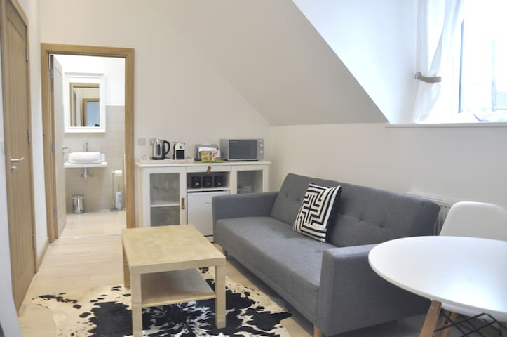 Living-room with Kitchenette