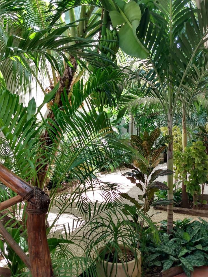 Casa Lupita Tulum. 4 Relajación y naturaleza