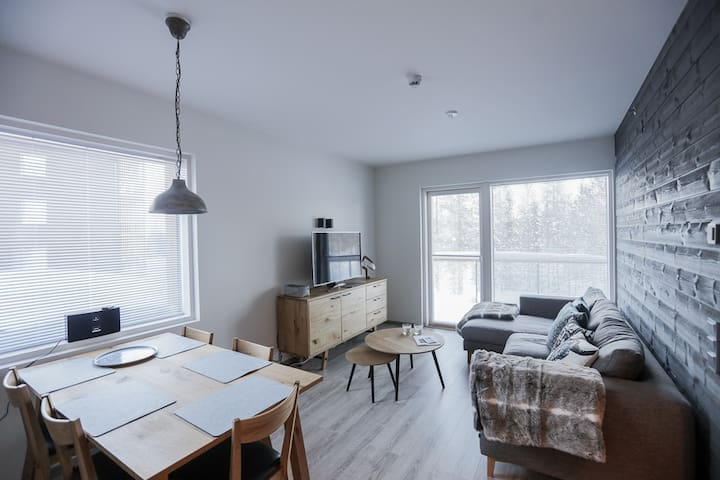 The perfect apartment for skiers in Levi