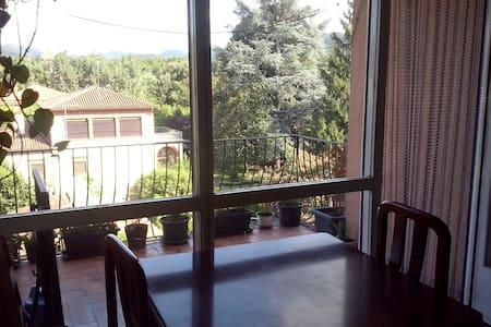 Piso en el centro de Olot con vistas - Olot