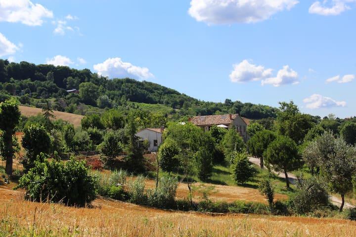 Villa Margherita - Appartamento Girasole