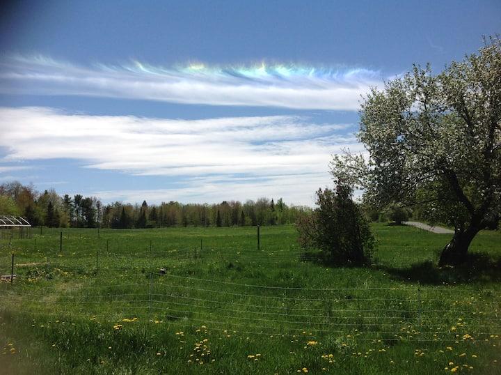 Old Moses Farm