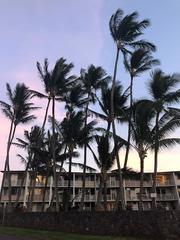 Peaceful Kuau Condo, One mile from Paia Town