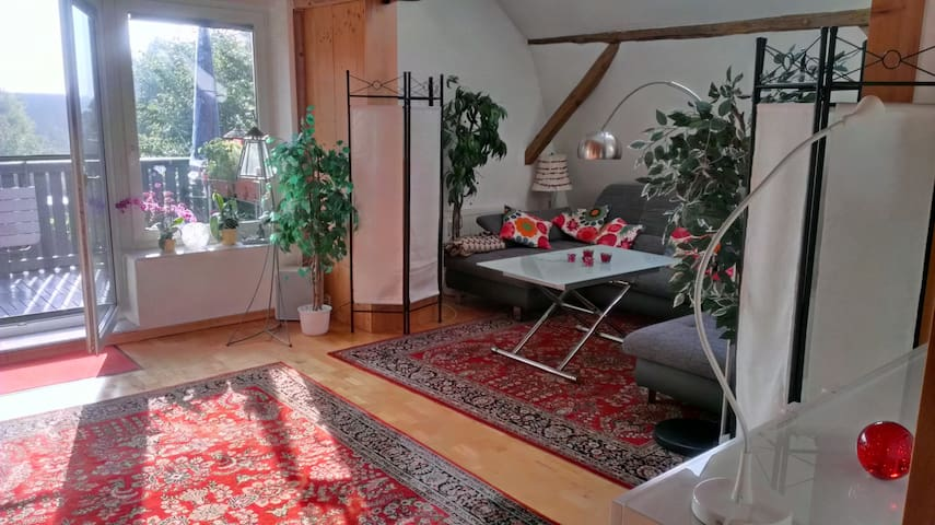 Wunderschönes Wohnen Ostseenähe in Bad Schwartau - Bad Schwartau - Appartamento