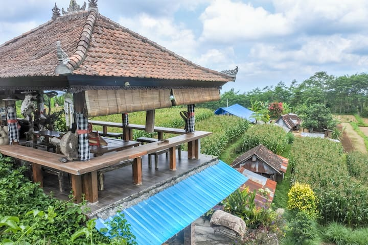 DBL room, Cozy, amazing batukaru mountain view