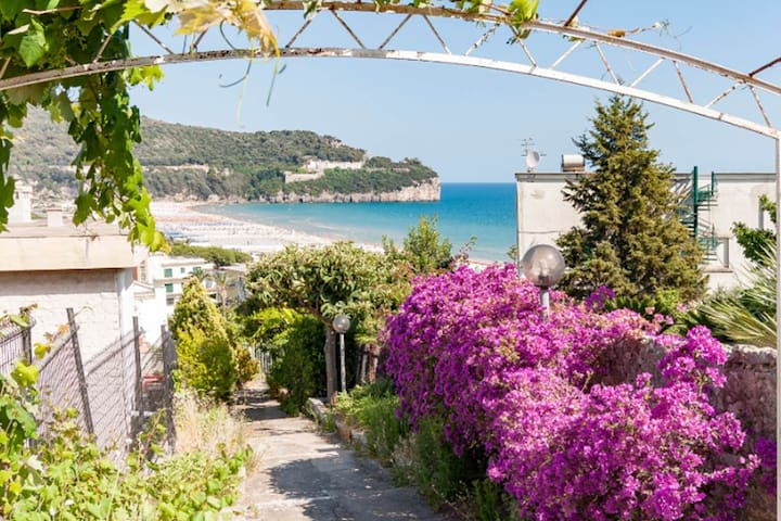 Intera casa e giardino mare Serapo Gaeta Spiaggia